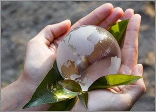 Sustentabilidade - site Korn Traduções